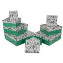 mayorista Mobiliario y accesorios oficina y comercio: Caja de regalo verde con lama y cactus, alrededor