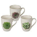 New Bone China Mug, Succulents, about 10 x 8 cm,