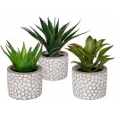 wholesale Artificial Flowers: Decorative succulents in white / gray ...