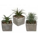 cactus décoratif en pot de ciment, environ 14 x 9