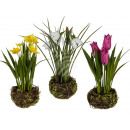 wholesale Home & Living: Deco flower in Rattan, about 20 cm, 3 times sortie