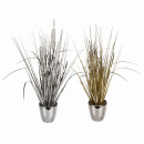 Decorative grasses with glitter, in a plastic pot,