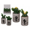 Candle, cactus, in cement pot with cactus print