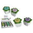 groothandel Bloemenpotten & vazen: Kaars, bloem, in  wit cement pot, ongeveer 6,5 x 6