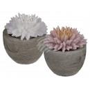 Großhandel Blumentöpfe & Vasen: Kerze, Blume, im  grauen  Zement-Topf, ca. ...