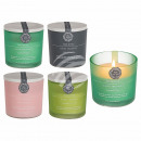 Scented Candle (Vanilla, White Musk & Rose, Le