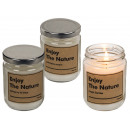 White scented candle (Cashmere cream, Spring Ivy