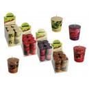 Geur Kaars (Winter Fruit, Berry, kaneel, Va