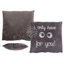 Gray Pillows with white letters, I only have eyes