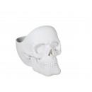 bandeja de almacenamiento polyresin blanco, cráneo