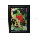 3D picture parrots approx. 25 x 35 cm