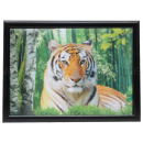 3D picture Tiger about 40 x 60 cm