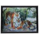 3D Bild Zwei Tiger ca. 40 x 60 cm