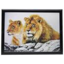 3D picture lion about 50 x 70 cm