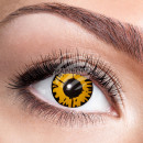 Soft tinted contact lens Twilight gold black