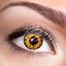 Weiche getönte Kontaktlinse Twilight gold schwarz