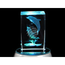 Crystal Square Theme: Dolphins Color: Clear
