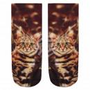 grossiste Vetement et accessoires: Scène Chaussettes Cat beige brun