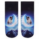 Scene Socks cat in moon blue beige black