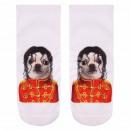 Scene dog socks multicolor