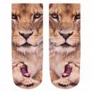 wholesale Stockings & Socks: Motif socks lion  with cub beige brown pink