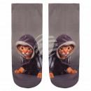 Großhandel Pullover & Sweatshirts: Motiv Socken Kätzchen mit Hoodie grau beige ...