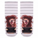 wholesale Fashion & Apparel: Motif socks Bad  dog white brown beige