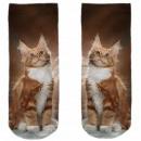 Motive socks brown white cat mackerel