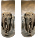 Motive socks multicolor elephants