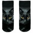 Motive socks multicolor cat
