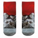 Motiv Socken Katze unter Sofa multicolor