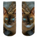 Motive socks multicolor cat cute