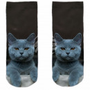 Motive socks brown white cat casual