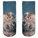 Motive socks blue white cat cute
