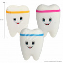 Squishy squishies sorting tooth white assorted