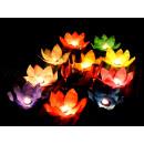 Water lantaarn lotusbloem verschillende kleuren -