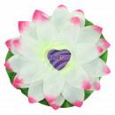 Wasserlaterne Sortierung Lotusblume