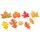 wholesale Food & Beverage: Autumn leaves wholesaler, mouldable stem ...