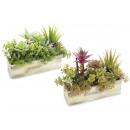 wholesale Artificial Flowers: Fake succulents compositions