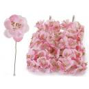 Gałązka dekoracja kwiat brzoskwini