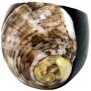ingrosso Gioielli & Orologi: Anello Sonoholz  con i formati di cozze ordinati