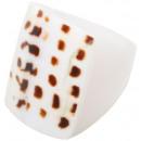 groothandel Sieraden & horloges: Gesorteerd ring  van het bot, Tigerkauri, maten