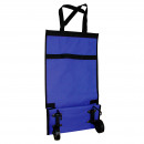 Kitchen - FOLDING SHOPPING CART SMALL 55,5X
