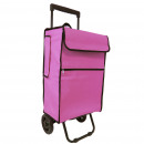 KITCHEN - SHOPPING CART WITH TELESCOPIC HANDLE R