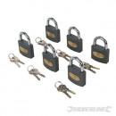 Eisenschlösser mit einer Schlüsselverriegelung, 6