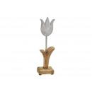 Tulipano metallo / Mango legname di metallo (/ H /