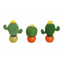 Cactus in vaso di ceramica di tessuti sorta verde