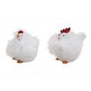 piume di pollo / gallo in poli Bianco 2 volte asso
