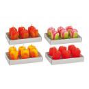 groothandel Home & Living: Teelicht set 6 stuks, tulp, 4- geassorteerd, B4