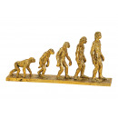 Espositore Human Evalution Poly Gold (B / H / T) 3
